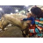 Klamath Falls Bull Sale